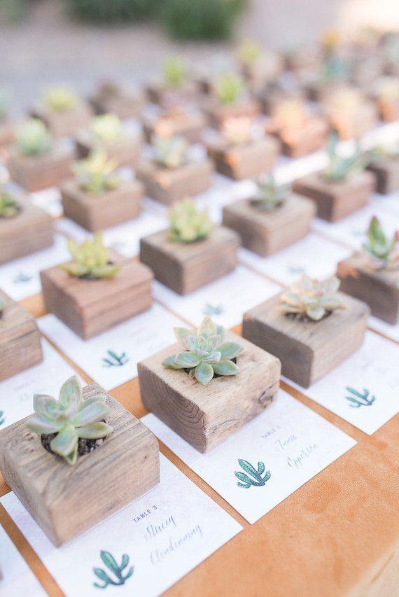 Succulent favors | 100 Layer Cake