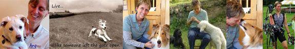 Slippery Elm for Better Pet Digestion