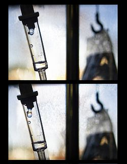 The TRUTH about Chemotherapy!