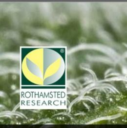Rothamsted International Fellowship Scheme in UK, and applications are submitted till12:00 UK time (GMT) on Monday 16 October 2017.Rothamsted International Fellowship Scheme is available for mid-career postdoctoralscientists with a minimum of 2 years experience from developing countries. http://www.scholarshipsbar.com/rothamsted-international-fellowship.html