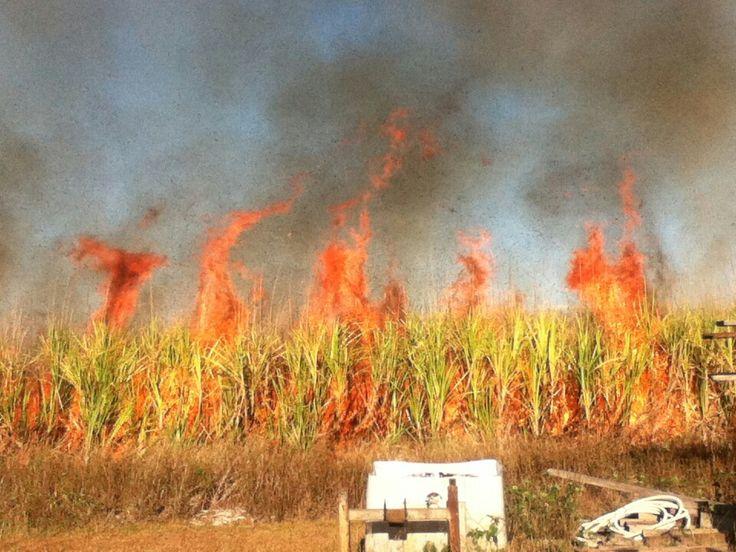 Burdekin, Queensland cane fire 2014