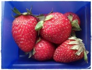 Real Easy School Lunch Snacks - Fruit
