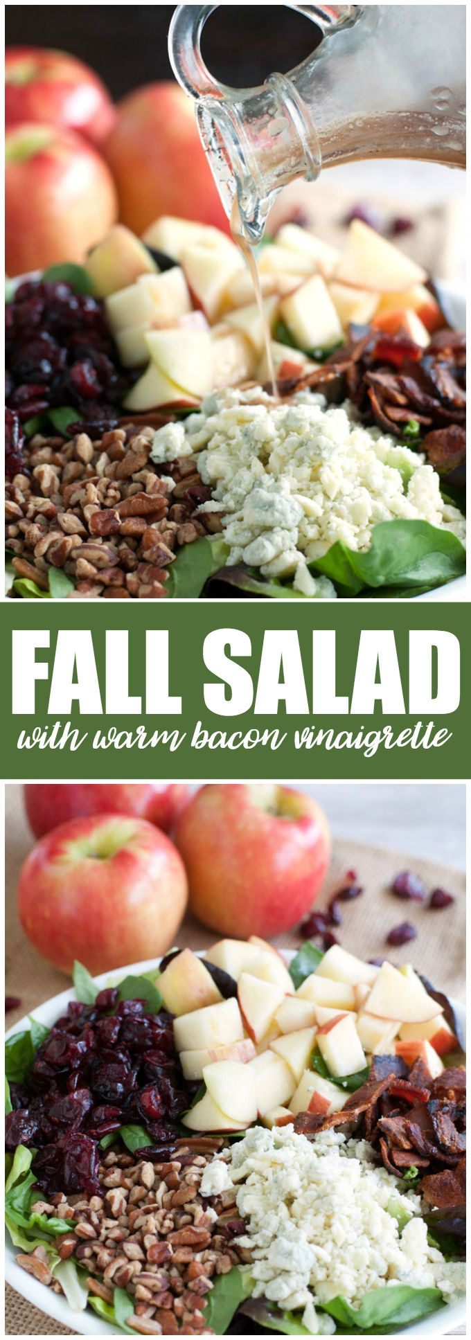 Fall Salad with Warm Bacon Vinaigrette - You'll love this hearty salad with its autumn flavors! It's packed full of goodness with Honeycrisp apples, pecans, dried cranberries, blue cheese and an oh so tasty warm bacon vinaigrette dressing.