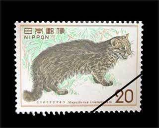 1974年発行 自然保護シリーズ第1集   イリオモテヤマネコ