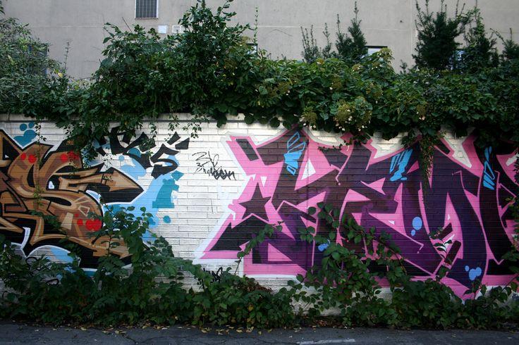 Contrast: nature vs #graffiti