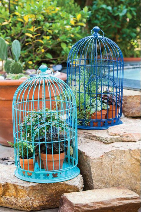 Birdcage Decor