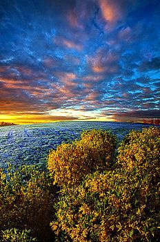 At Peace in Morning Solitude by Phil Koch