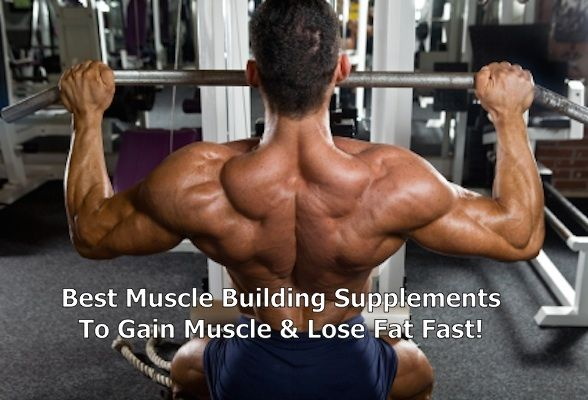 best supplement to burn fat and build muscle