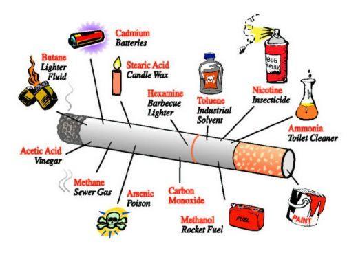 Cigarette Poisons