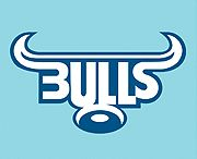 Bar Accessories - Bulls rugby Team branded Supporters Bar Mats, Coasters and Floormats.