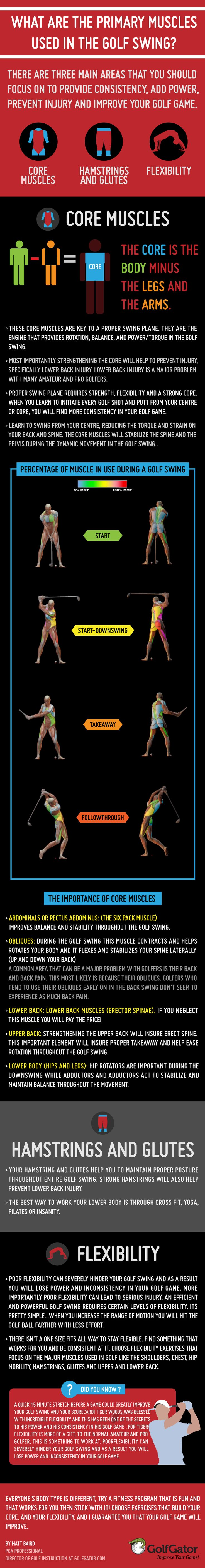 Created by PGA pro Matt Baird, this infographic is all about the muscles used in your golf swing
