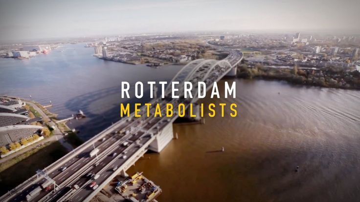 Around the world cities are struggling with realities of social, environmental and economic change. 7 innovative city transformation firms in Rotterdam joined forces…