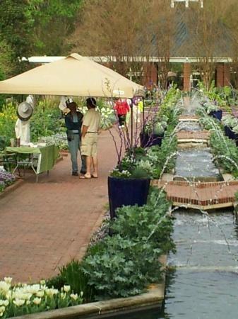 23 Best Columbia Sc Images On Pinterest South Carolina Upstate South Carolina And Beautiful