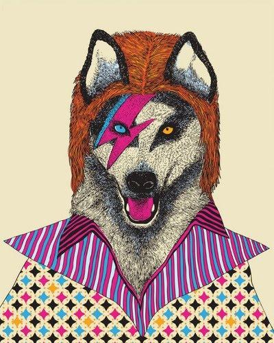 David Bowie Wolf. http://1.bp.blogspot.com/_DMBvGeXi-zU/THcKC1B0VhI/AAAAAAAAAC0/B8BnTlHgI4o/s1600-R/art,color,cool,illustration-e917992aa3ff7489dfa4181442be08fd_h.jpg