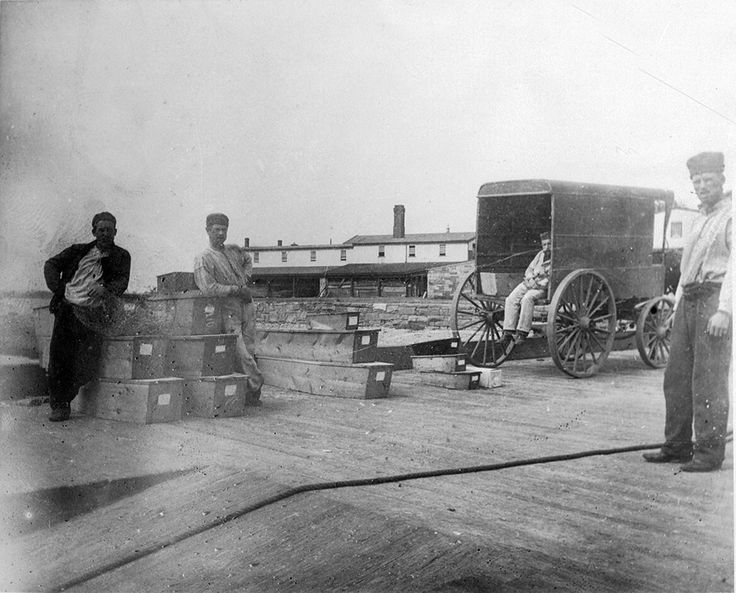 THE HART ISLAND PROJECT (NYC) Since 1880, 66,156 people have been buried in mass graves on Hart Island. The Traveling Cloud Museum is a collection of their stories. (Jacob Riis Collection © Museum of the City of New York) https://www.hartisland.net/history