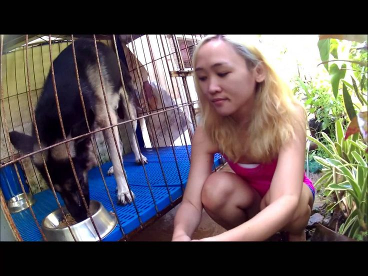gopro alternative philippines   First Test with My W7 1080p HD 12MP DV Camcorder - GoPro /SJCam Alternative - WATCH VIDEO HERE -> http://pricephilippines.info/gopro-alternative-philippines-first-test-with-my-w7-1080p-hd-12mp-dv-camcorder-gopro-sjcam-alternative/      Click Here for a Complete List of GoPro Price in the Philippines  *** gopro alternative philippines ***  Just testing my new sports (action) camera W7 1080p HD 12MP DV Camcorder with free Monopod.  BUY THIS CAME