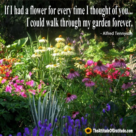 104 best gratitude image quotes images on pinterest for Garden design quote