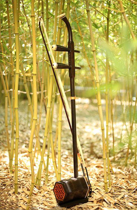 Erhu, neboli čínské housle