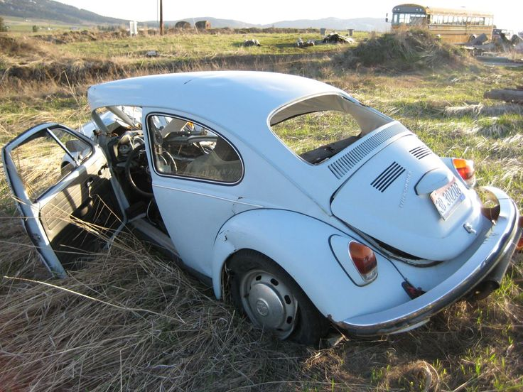1000+ images about Volkswagen Carocha on Pinterest   Cars, Vw forum and Volkswagen