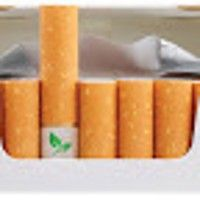 """Dubbed 'Cigg Seeds', Forman's idea outfits cigarettes with """"biodegradable filters that contain wild flower seeds""""."""