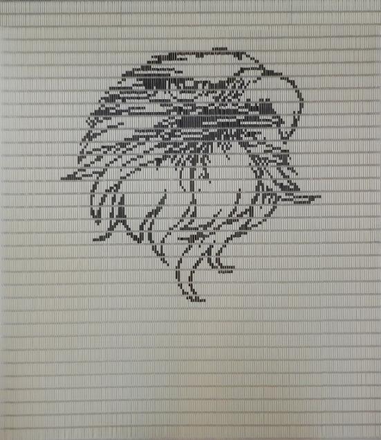 Vliegengordijn Eagle speciaal voor tuindeuren ontworpen door Deco Creations, deze en vele andere vliegengordijnen zijn te koop op Deco Creations.nl. Bezoek onze website