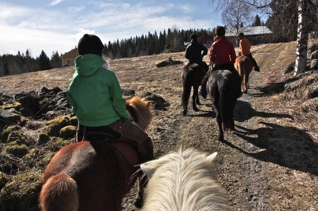 Horseback riding in Finland