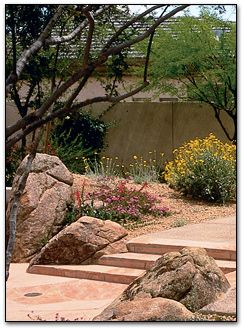 Using boulders and hardscape to complement native plants in landscaping.