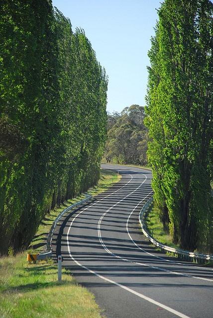 Road to Glen Innes by CJHudson, via Flickr