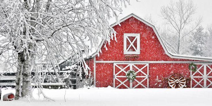 10 Beautiful Snowy Red Barn Photos to Celebrate the Season  - CountryLiving.com