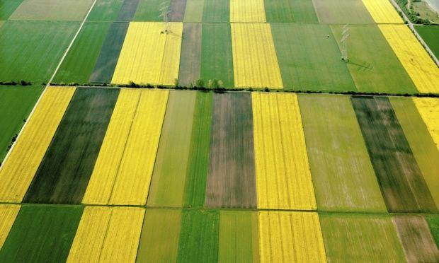 We need regenerative farming, not geoengineering #soilcarbon #soilsolutions #carbon #sequestration