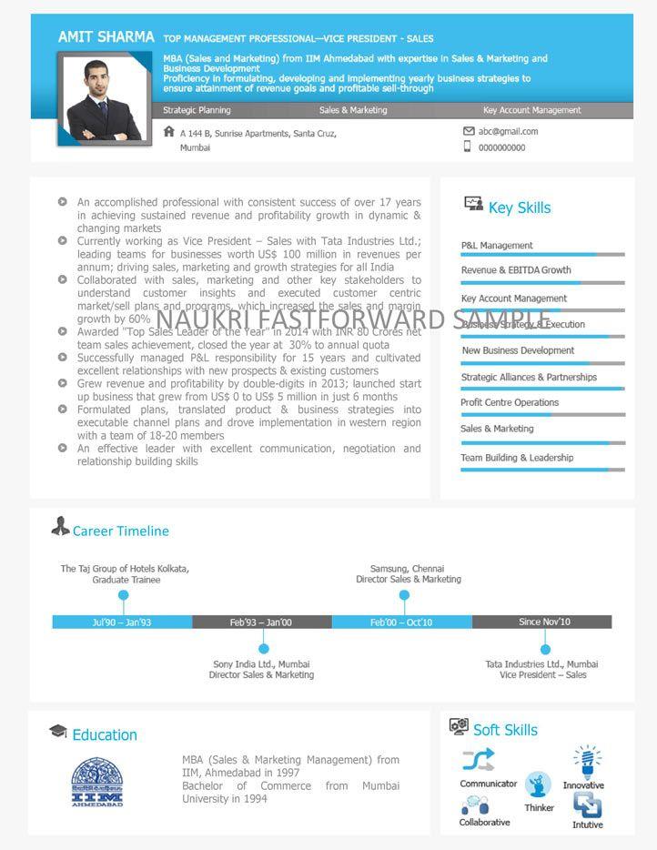 Visual Resume Samples Visual Resume Curriculum Vitae Format Curriculum Vitae