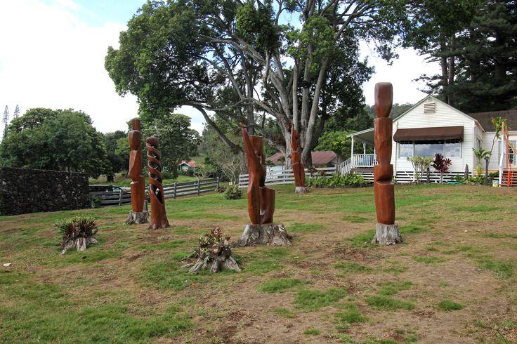 Rose Ranch, Maui, Hawaii. Pa Hula-Hula Circle är graverad av gamla stubbar av eukalyptusträd.