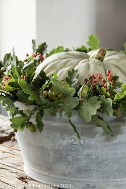 This Fall #decor would look great in a cedar planter tub or whiskey barrel planter...#coopersmithandson #gardening