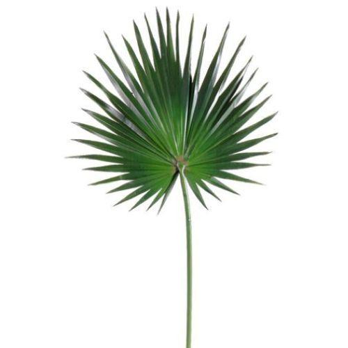 30-Silk-Fan-Palm-Leaf-Stem-Green-pack-of-12
