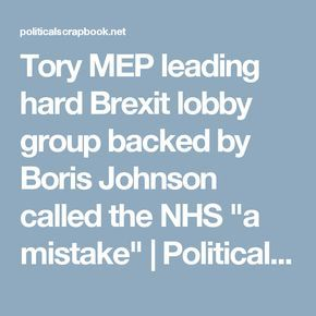 """Tory MEP leading hard Brexit lobby group backed by Boris Johnson called the NHS """"a mistake"""" 