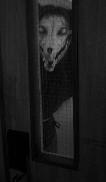 Que viene el lobo...
