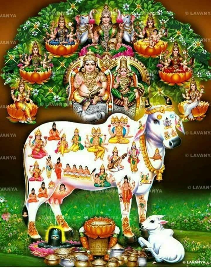 Kuber Lakshmi & Kamadenu Blessings | Hinduism | Durga