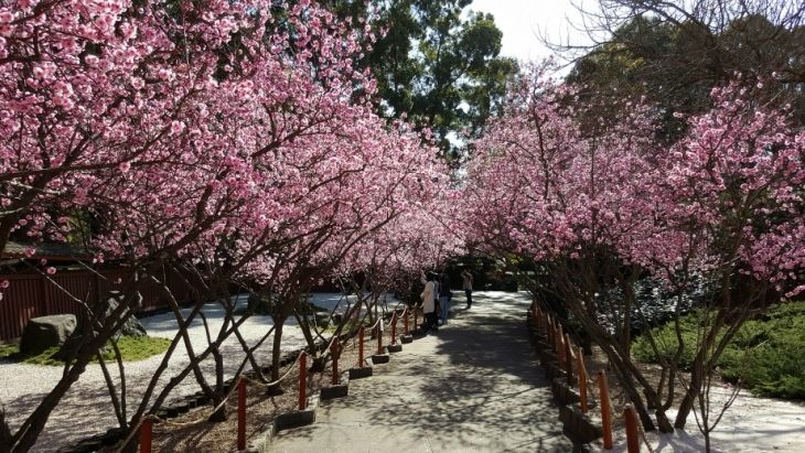 ellaslist shares 10 of our favourite, most special, secret, hidden spots on Sydney