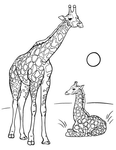 Printable Giraffe Coloring Page Free PDF Download At Coloringcafe
