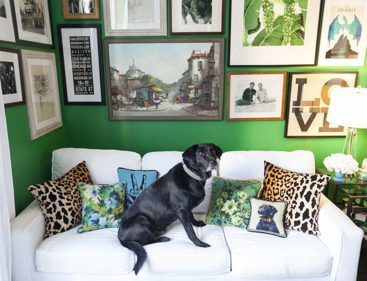 A tour of a blogger's guest room/home office... [via www.thechicagolifeblog.com]    green walls | green paint | green room | gallery wall | leopard accents | upholstered stools | guest room ideas | desk ideas | black desk | white couch | kelly green | green bedroom | green paint colors | throw pillows | blue and white rug | ottoman | chinoiserie | blue and white pottery