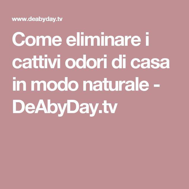 Come eliminare i cattivi odori di casa in modo naturale - DeAbyDay.tv