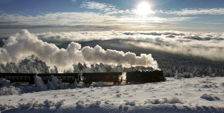 Zug der Harzer Schmalspurbahn bei der Fahrt auf den Brocken.