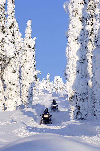 Snowmobile race in Iso-Syöte fell, Finland by Visit Finland, via Flickr- This looks SO beautiful!