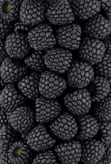 The Beauty of Blackberries! (If you want to grow gorgeous organic fruit like this, we have just the right organic fertilizer to do it - EarthPods available from our site)