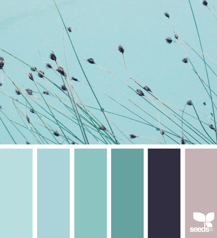 Nature Tones via @designseeds