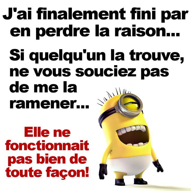 Les MInions https://www.facebook.com/lesminions2015 #Infos #Bonus,.#DUC 2015 http://bit.ly/1lBMzS4