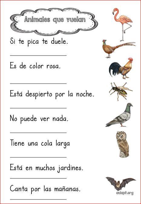 Animales que vuelan. Comprensión lectora de frases.