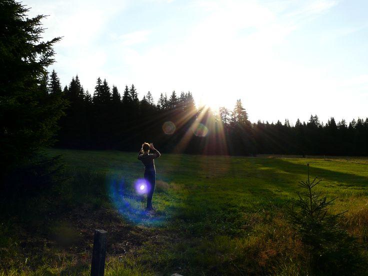 Sunny day :)