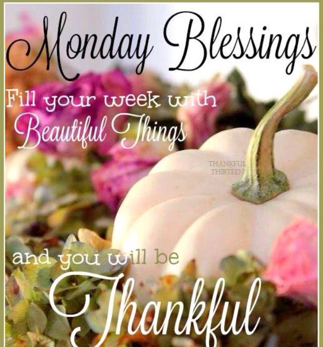 82 best monday images on pinterest monday blessings mondays and monday blessings m4hsunfo Choice Image