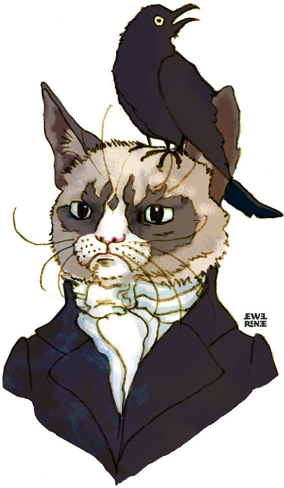 Edgar Allan No  Grumpy Cat T Shirt by JewelRenee on Etsy, $18.00